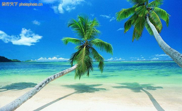 沙滩大海,自然风景,椰树 沙子 倒影,沙滩大海0042