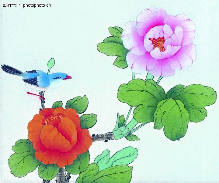 中华图片,月季花