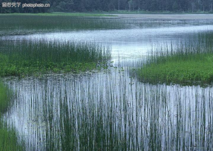 山水剪影,自然风景,水草 湖泊 沼泽,山水剪影0006