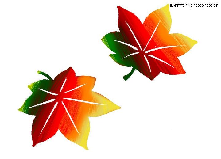 彩绘,漫画卡通,红色 树叶 飘落,彩绘0001