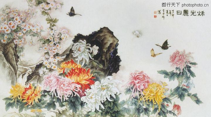 中国现代花鸟,山水名画,榄菊 黄色 白色,中国现代花鸟0109