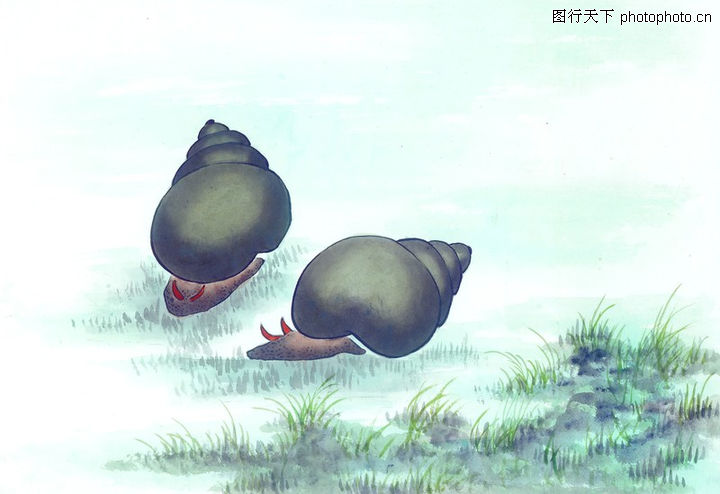 水下动物画0009