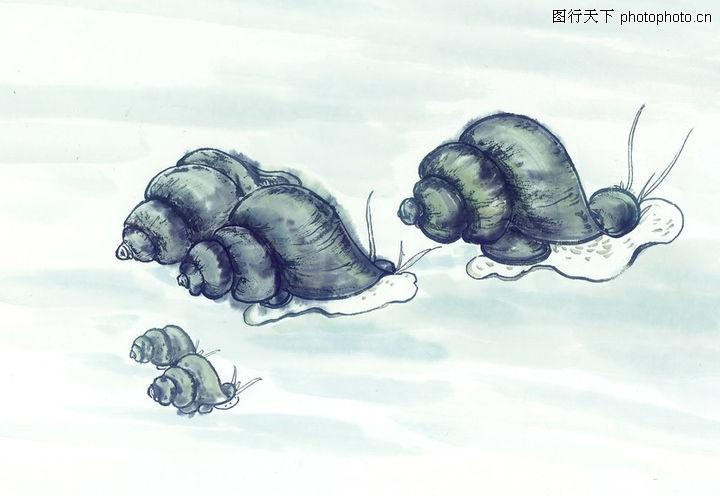 水下动物画0017