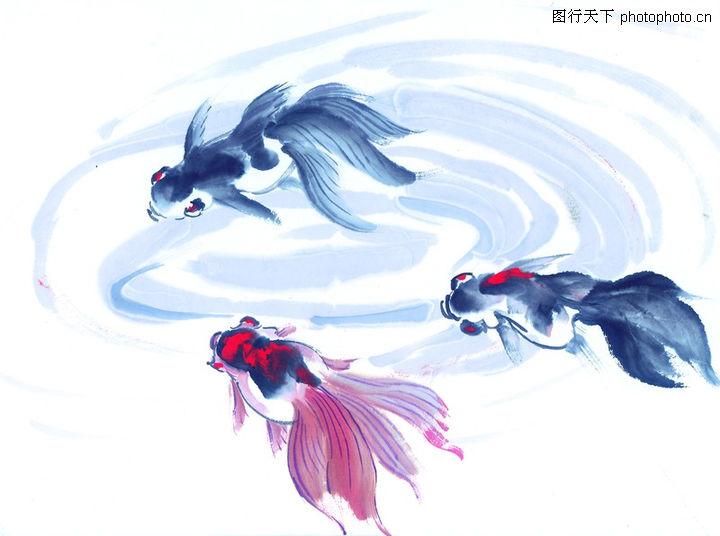 水下动物画0048