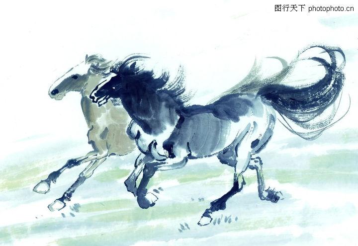中国动物画,山水名画,马 奔腾 千里马,中国动物画0057