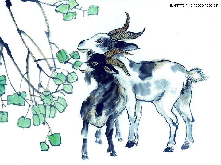 中国动物画,山水名画,山羊 树叶 吃草,中国动物画0065