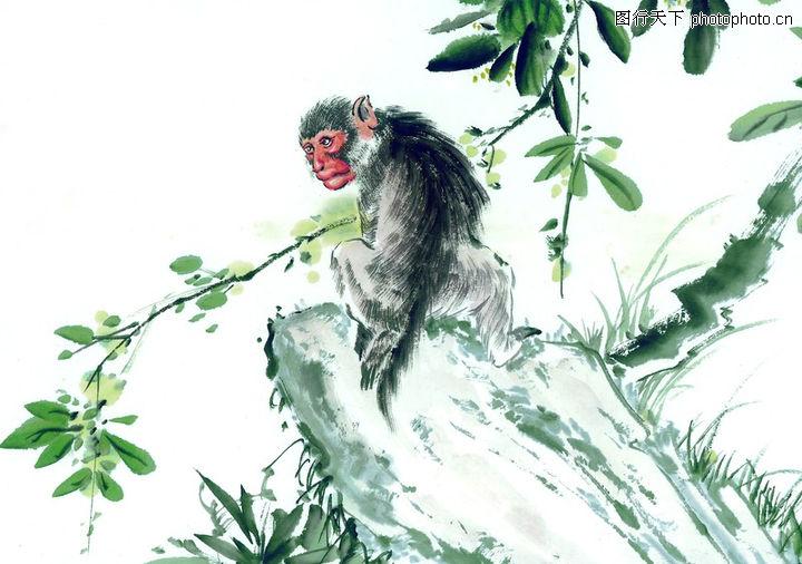 中国动物画,山水名画,石顶 攀爬 回头,中国动物画0076