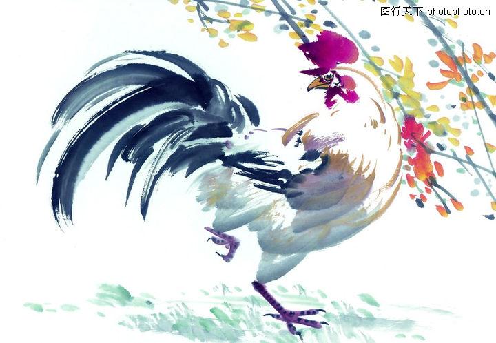 中国动物画,山水名画,美丽 展落 中国,中国动物画0084
