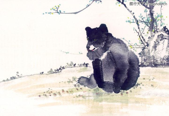 中国动物画,山水名画,黑熊 墨笔 生动,中国动物画0097