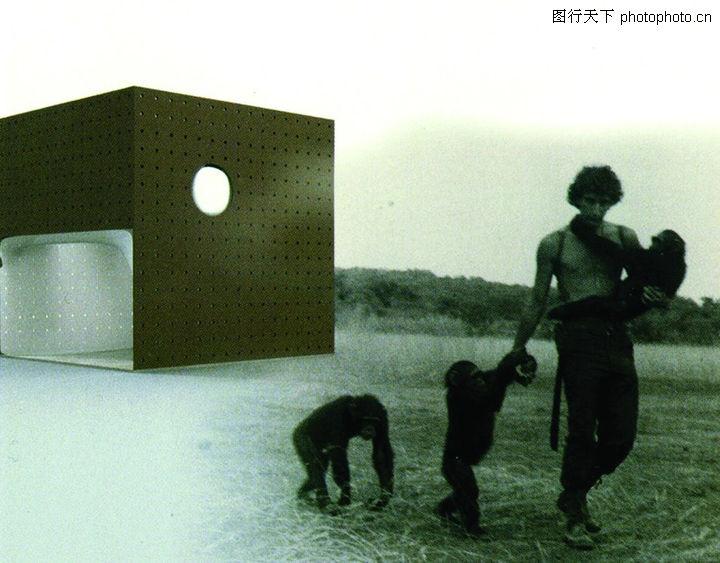展位设计 展览展示 两只猴子 灰色黄昏 奇怪的建筑