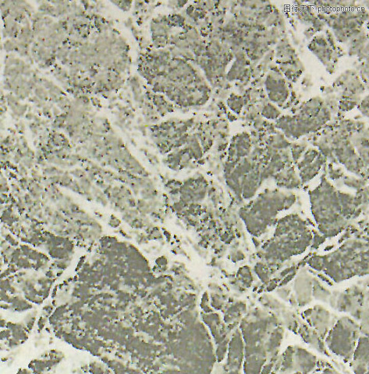 瓷砖/瓷砖0499