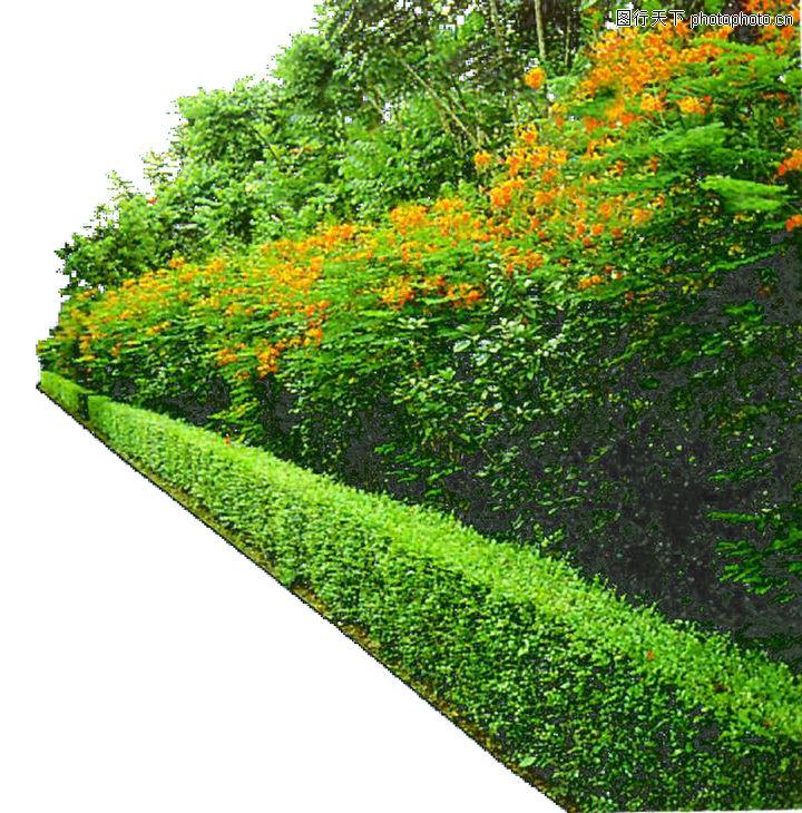 建筑灌木水彩渲染图片