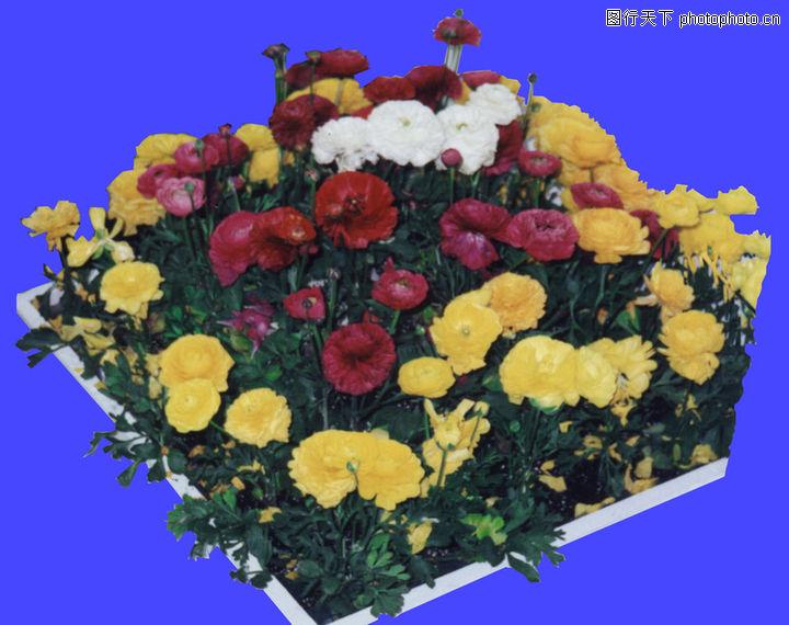 长方形花坛矢量图