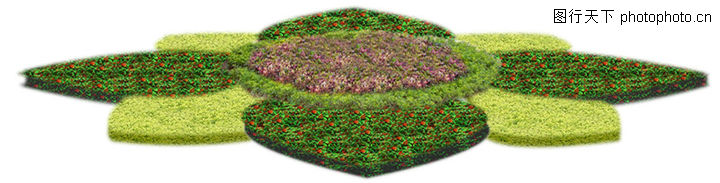 花坛图片-植物图,植物; 长方形花坛模纹图案; 平面后期贴图-花坛b110