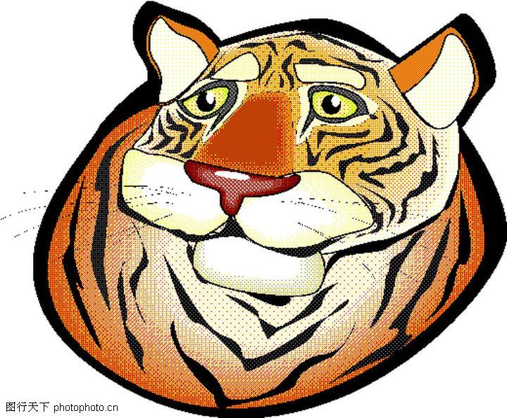 威武小老虎的可爱图片