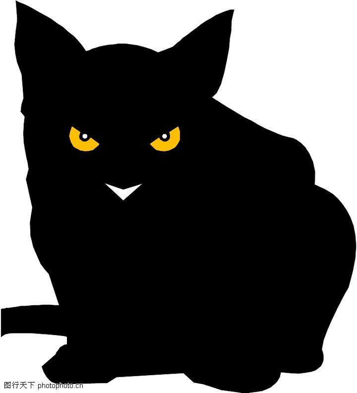珍稀动物,动物,黑猫 诡异眼神,珍稀动物0034