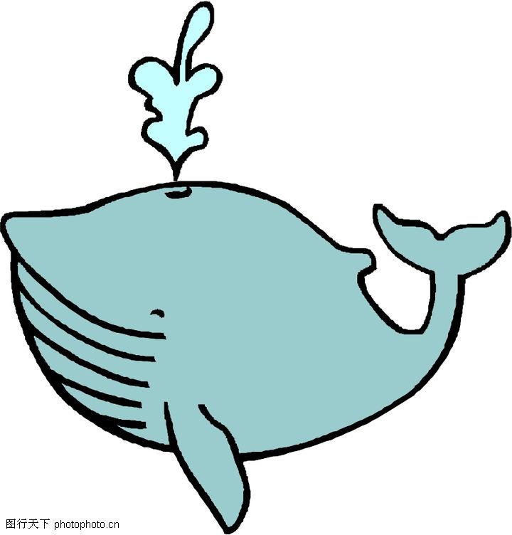 海洋动物0508