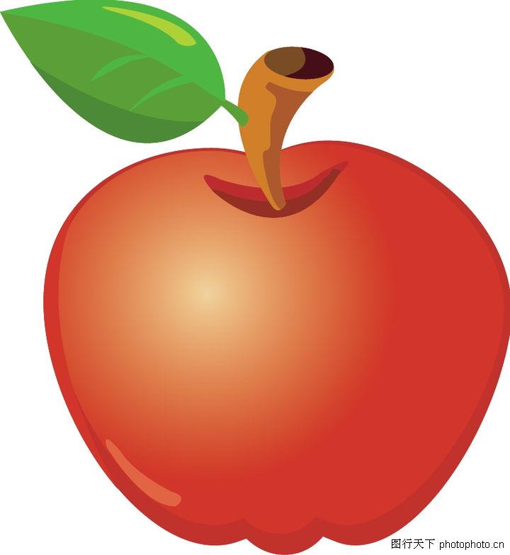 水果/水果大全0029