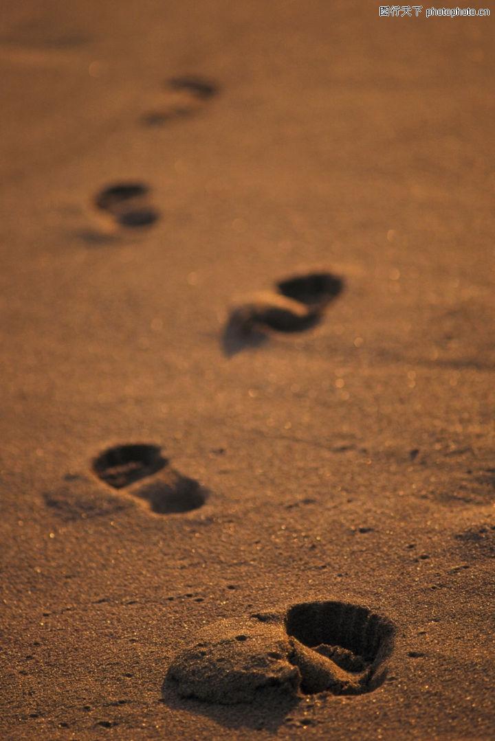 海滩 自然风景 脚印 留下 沙坑