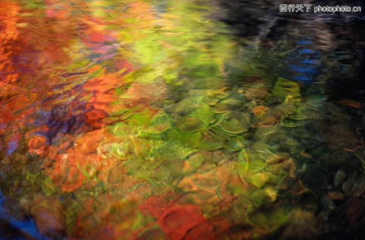 自然花草,自然风景,海底写意 斑驳海石 五彩色泽,自然花草0174