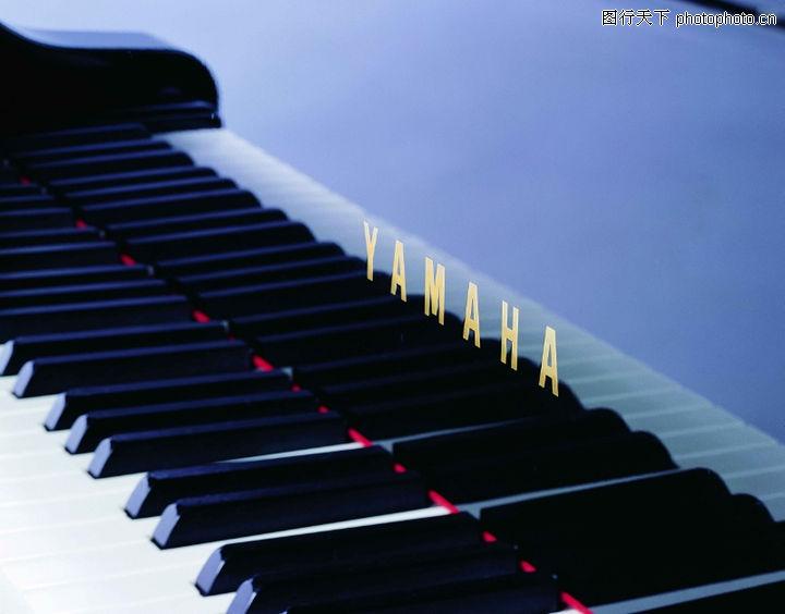 艺术,钢琴 黑白