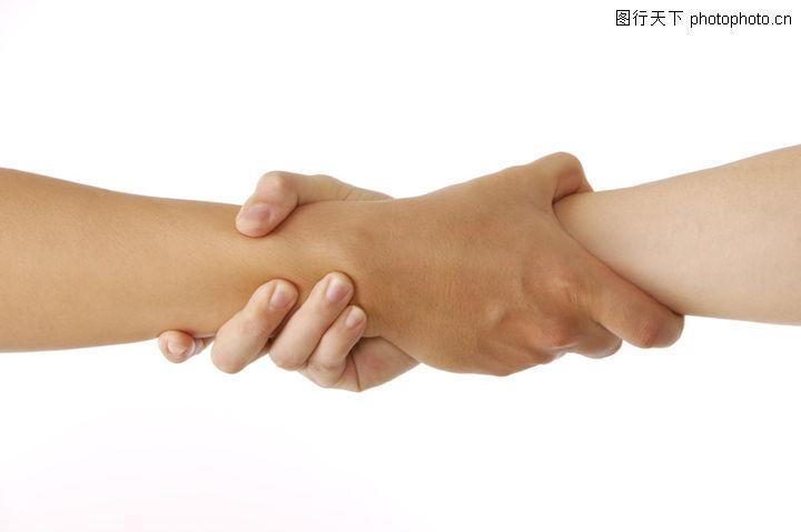 手姿态,人物,互相 紧握 前臂,手姿态0008 手姿态 人物 互相 紧握 前臂评 级:编 号:A