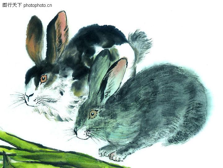 国画动物图片欣赏