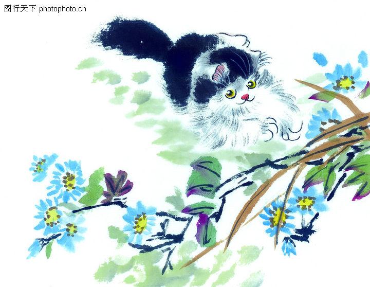 猫专辑,中国国画,遥望 树枝 小鸟,猫专辑0013