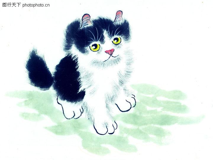猫专辑 中国国画 家猫 耳朵 皮毛