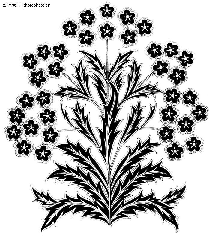 植物图案花纹 中国民间艺术 碎花; 一丛盛开的五瓣花黑白印花; 一丛