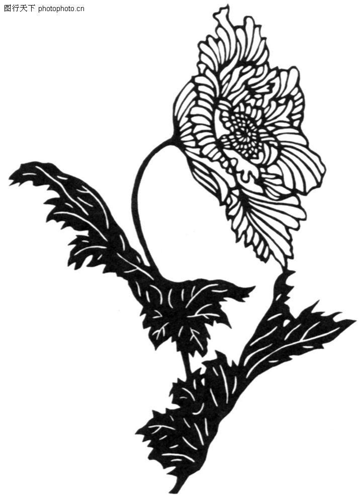 纹样设计单独纹样线描