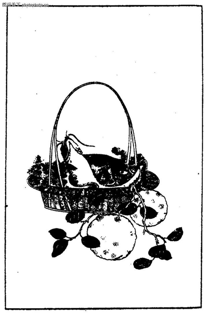 植物图案花纹,中国民间艺术,植物图案花纹0321