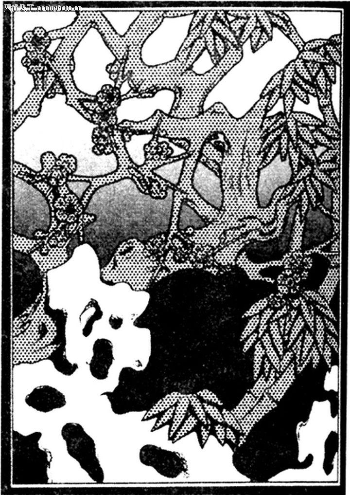 简约黑白头像植物