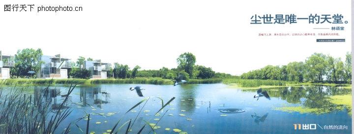 华东楼书专辑,中国优秀房地产广告2005,湖泊 飞鸟 树木,华东楼书专辑0082