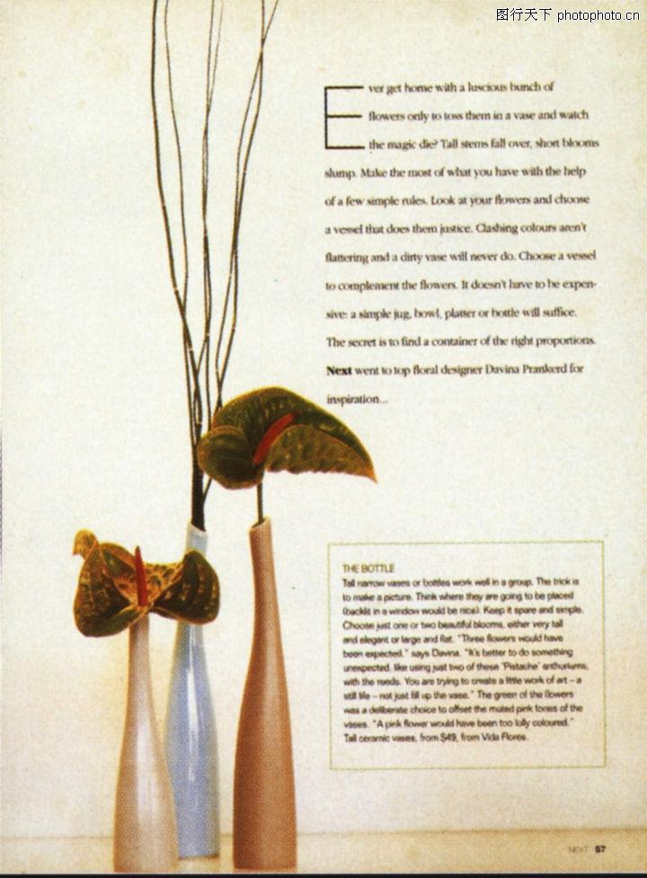 版式设计之图文配合,书籍装帧设计,花 花瓶 插花 艺术 修...