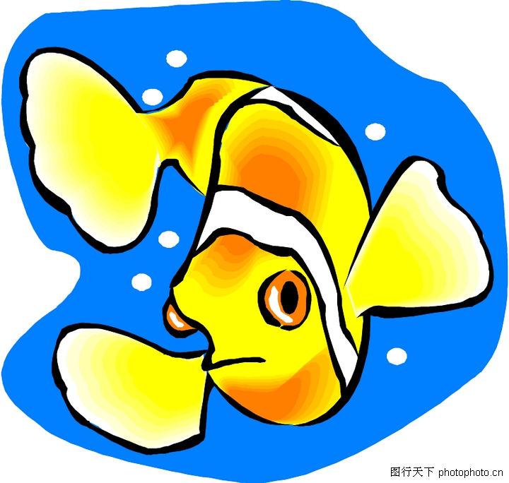 海洋动物1539