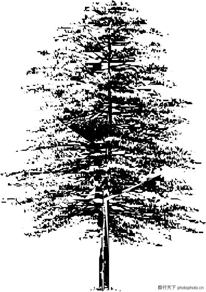 钢笔手绘植物图片