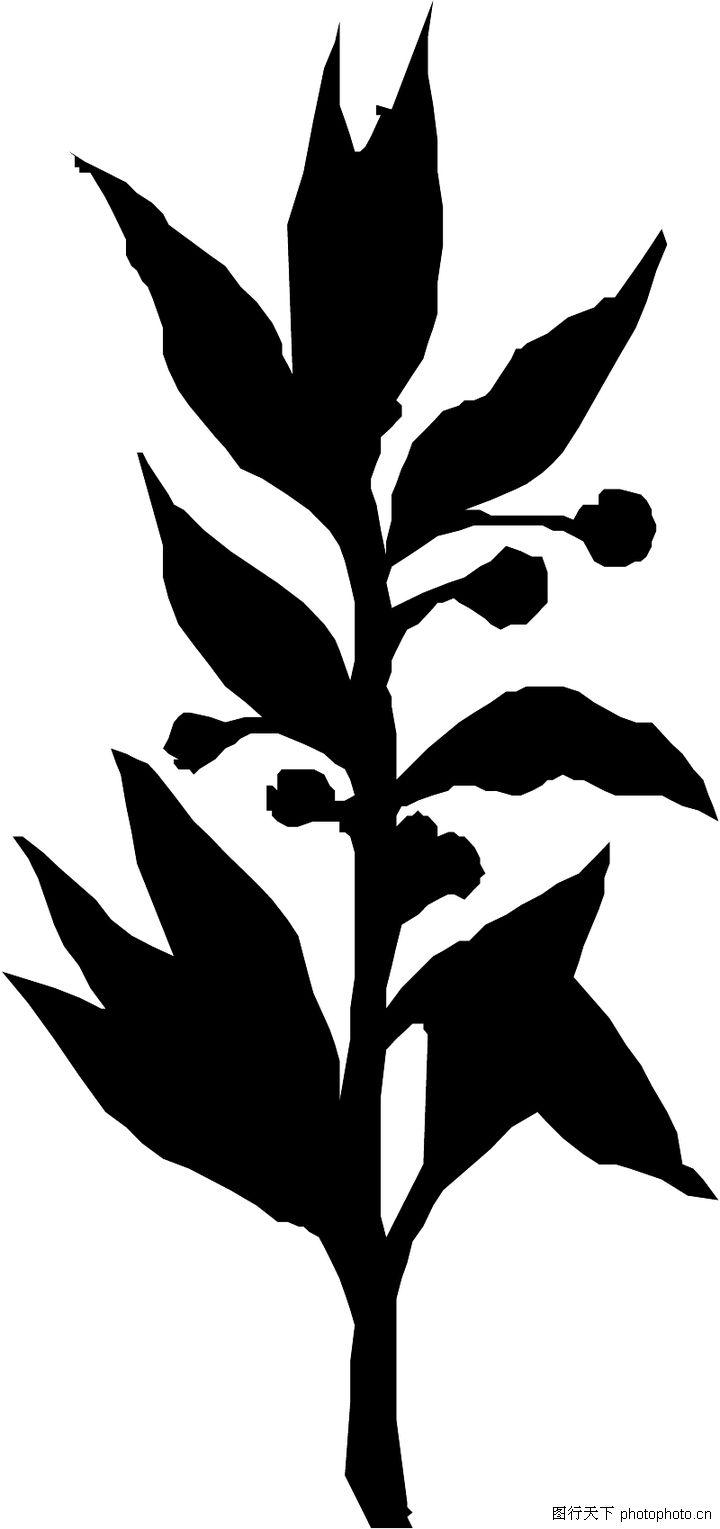 黑白蝴蝶树枝矢量图 矢量花卉花纹 矢量素材 素彩