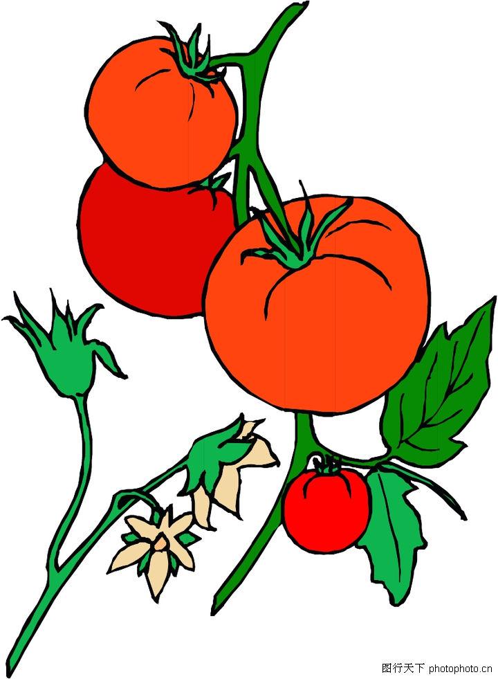 儿童画蔬菜水果图片展示