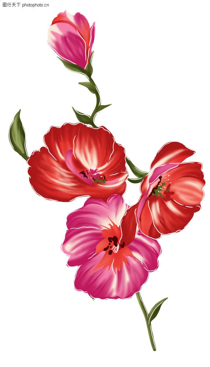 典雅花纹,花纹边框,红艳 花枝 灿烂,典雅花纹0130