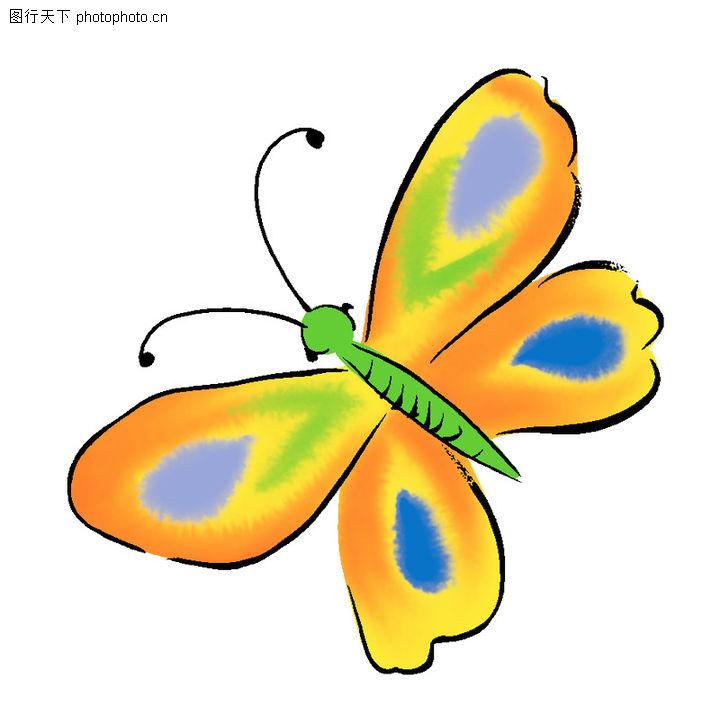 花纹边框,彩蝶