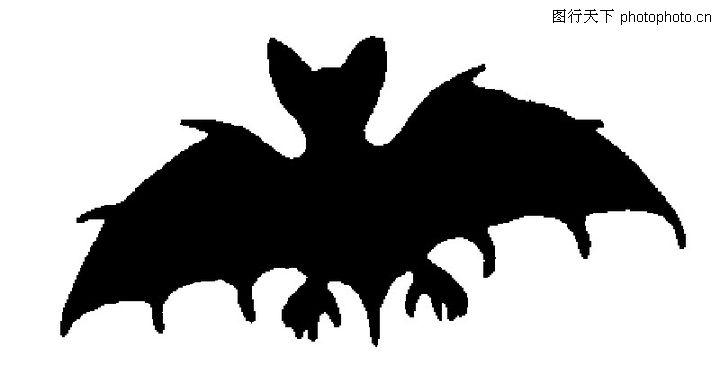 古典花纹,艺术图片,蝙蝠,古典花纹0208