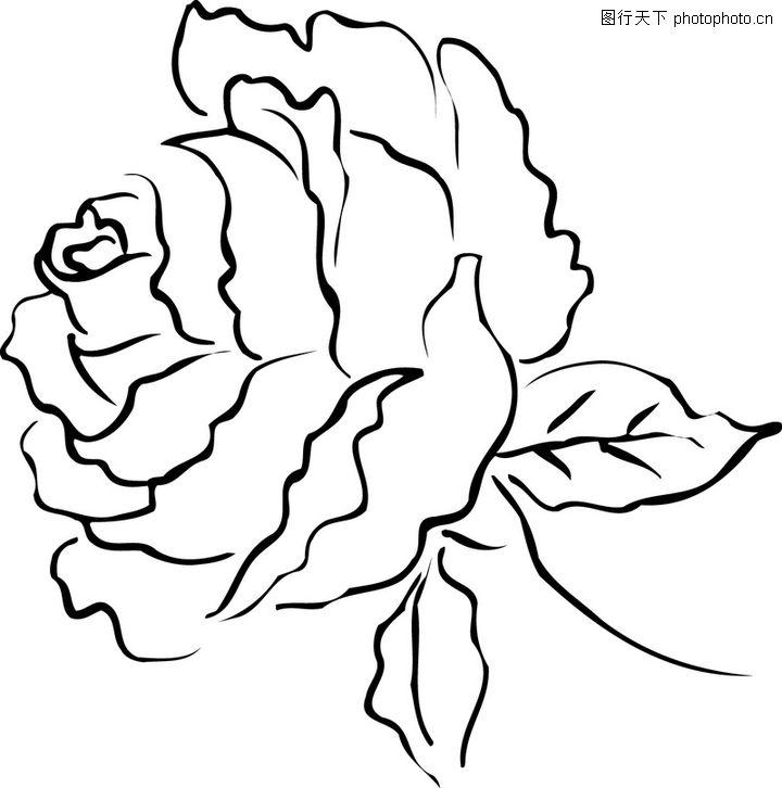 简单清新手绘花边