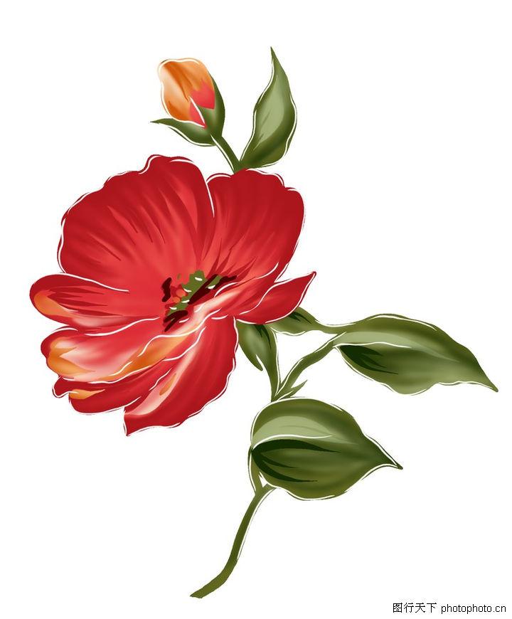 花纹边框,分层花纹,一枝 不同 花蕾,花纹边框0241
