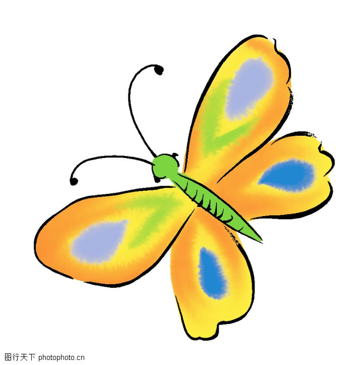 蝴蝶绘画动物美术设计艺术流行色彩超炫潮流 蝴蝶绘画动物