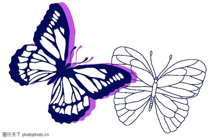 手绘蝴蝶图片铅笔画图片 手绘荷花图片铅笔画,手绘梅花图片