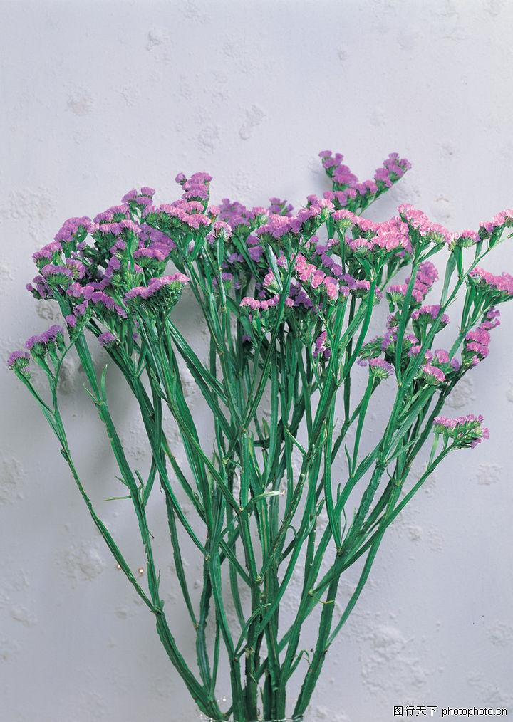 花藝擺設,風景,花藝 長桿植物 小花朵,花藝擺設0056