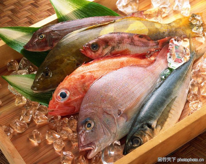 海鲜美食,饮食,海鱼 冰块