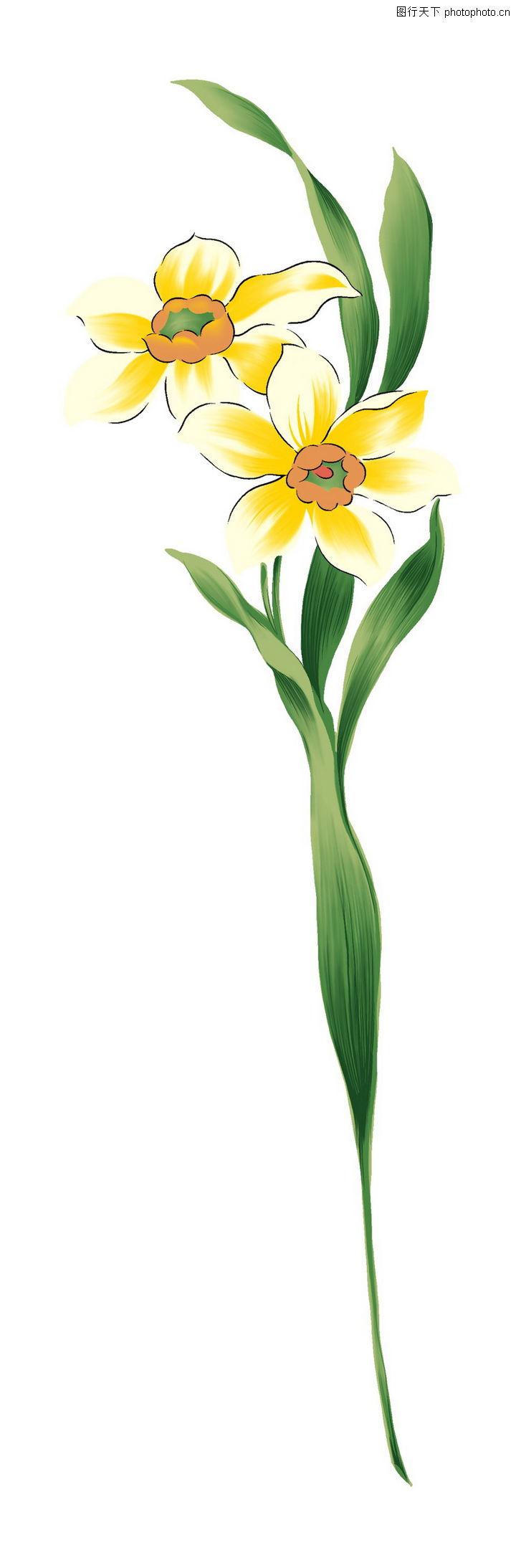 新潮色彩,精品花纹边框模板,一枝花,新潮色彩0037