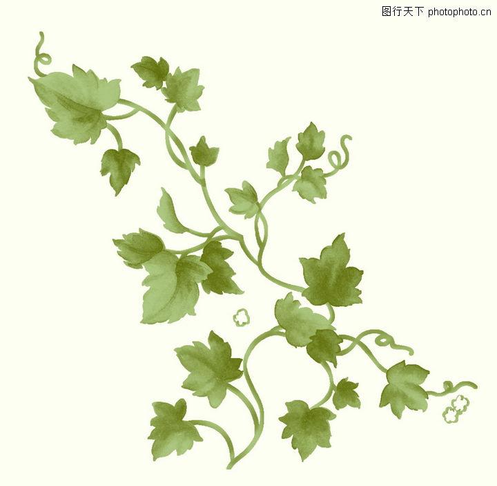 精品花纹 边框 模板 绿色 藤蔓 饰